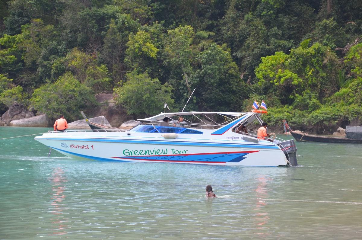 Greenview Tour Boat